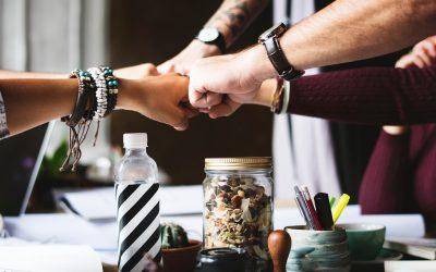 Organizational Culture embracing inclusion