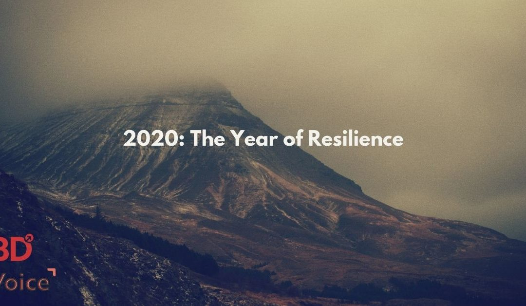 Learning from 2020 : The Year of Resilience